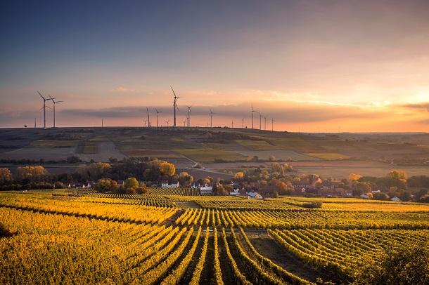 Parteiprogramm Umwelt und Energie